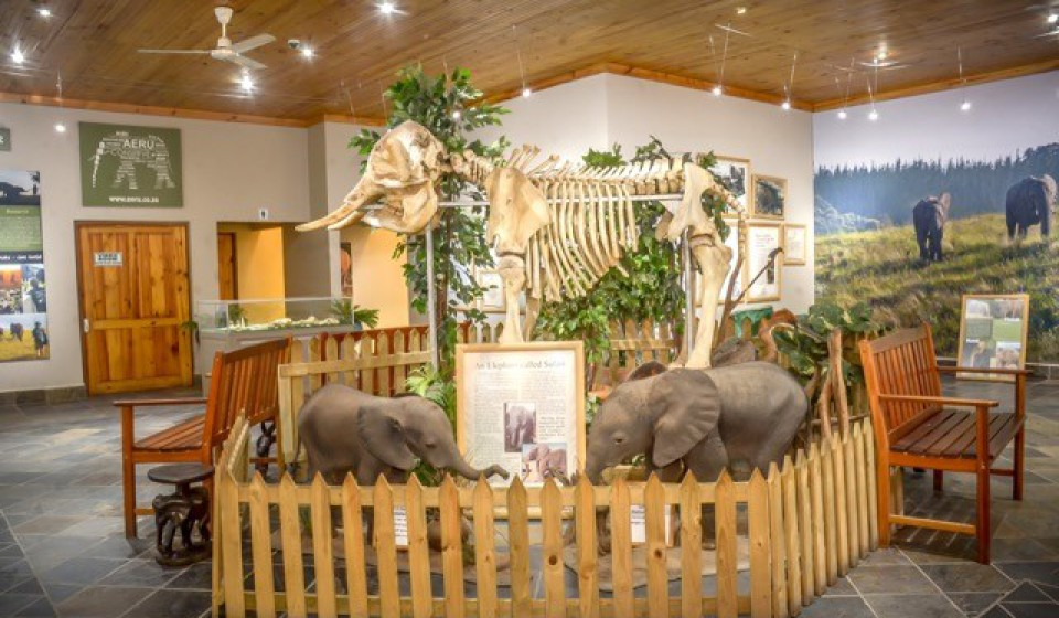 Interpretation Centre at The Knysna Elephant Park