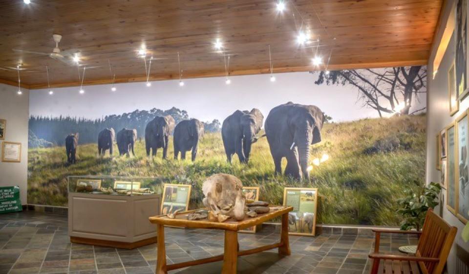 Interpretation Centre at The Knysna Elephant Park