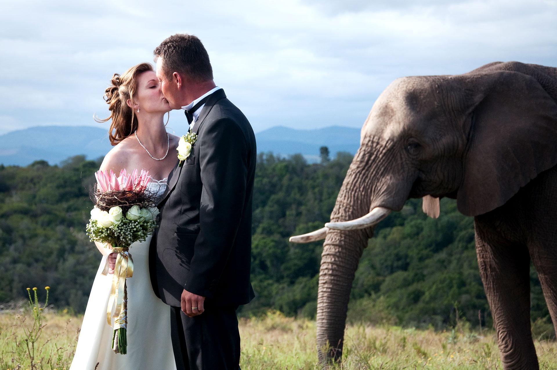 KEP_20051026_WEDDING_PICS_GN_219